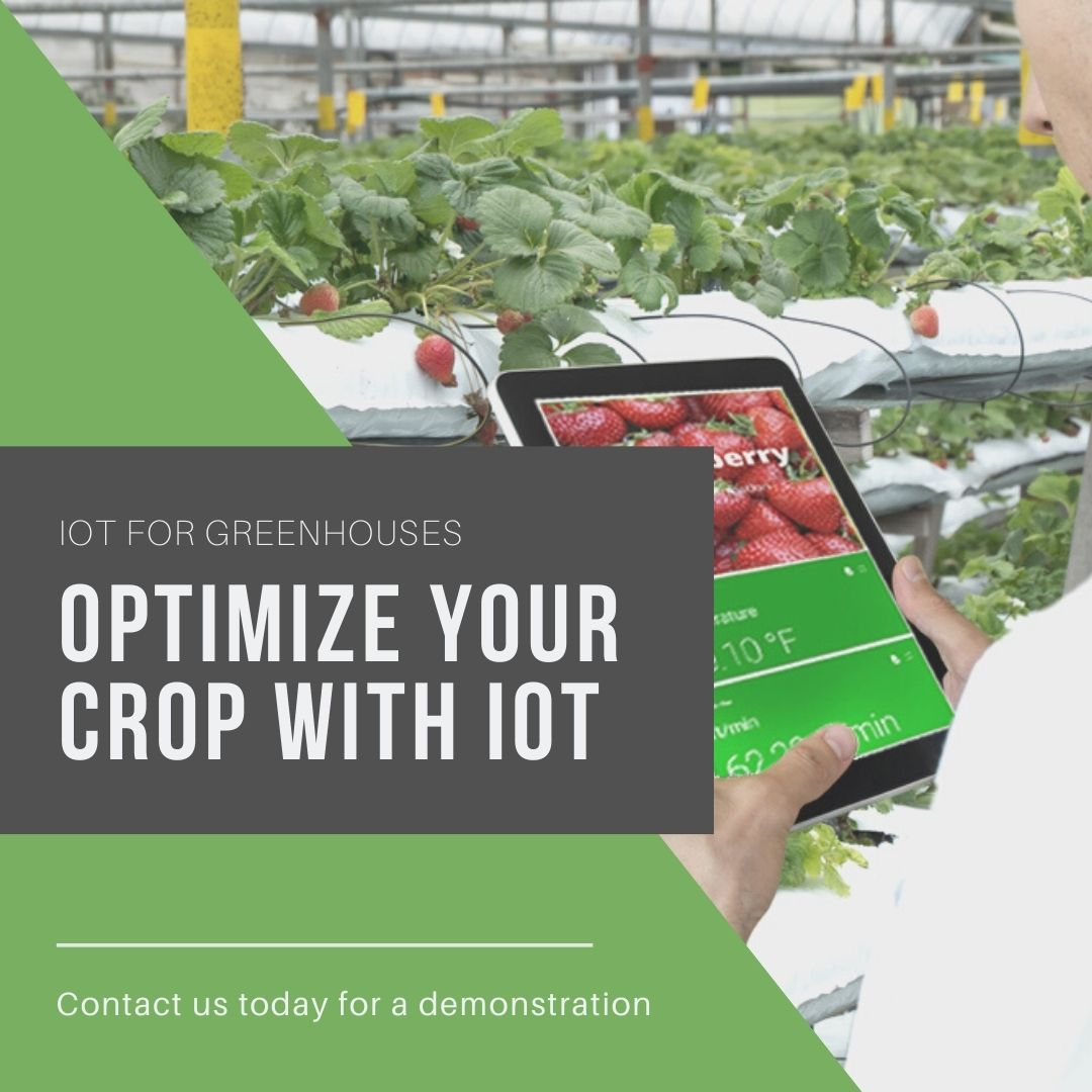 Greenhouse Automation & IoT